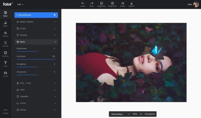 fotor 2021'in En İyi Ücretsiz Fotoğraf Düzenleme Programları