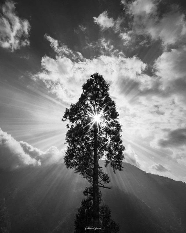 siyah-beyaz-fotografcilikta-isik Siyah Beyaz Manzara Fotoğrafçılığı İçin 5 İpucu